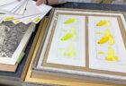 第三回 銅版画工房展 開催のお知らせ